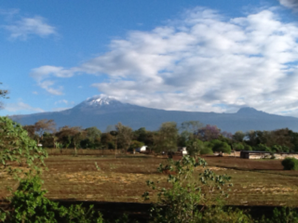 View of Mt Kilimanjaro from hotel